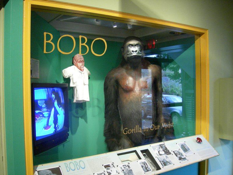 MOHAI_Bobo